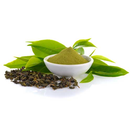 Organic Black/Green Tea Extract(HWS)